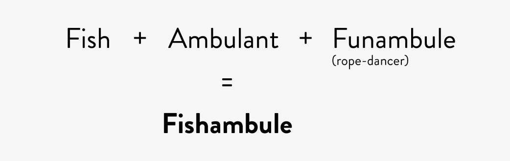 fishambule-nom-3